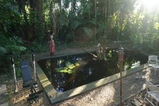 Junglehouse (Miami)