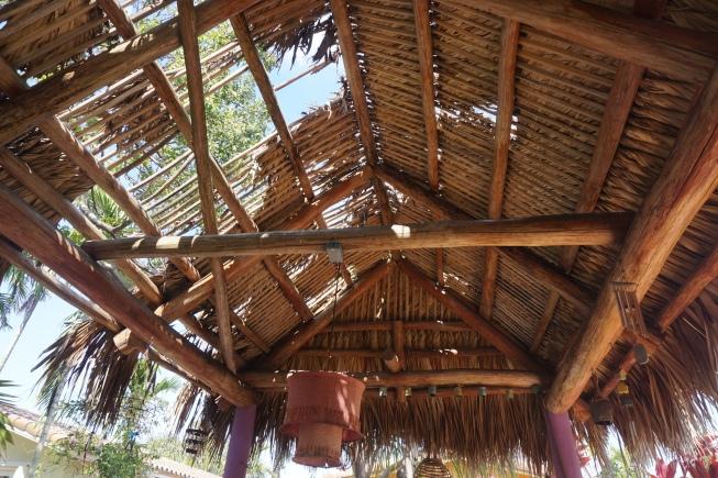Dino's House